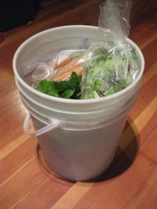 CSA in a bucket