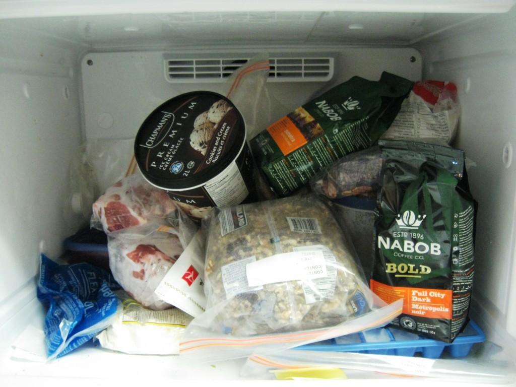 standing-freezer-chaos