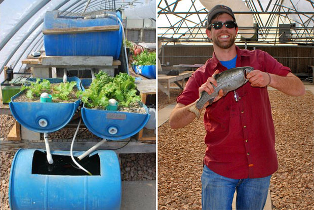 aquaponics high tech drums fish and plants