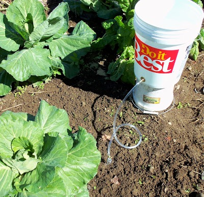 Irrigation systems five gallon ideas bucket drip irrigation solutioingenieria Image collections