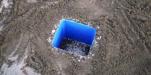 5 gallon bucket crab trap