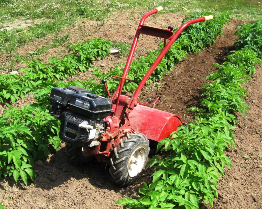 potato-patch-rotortiller