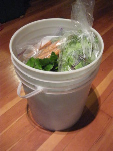storing-food-in-5-gallon-bucket