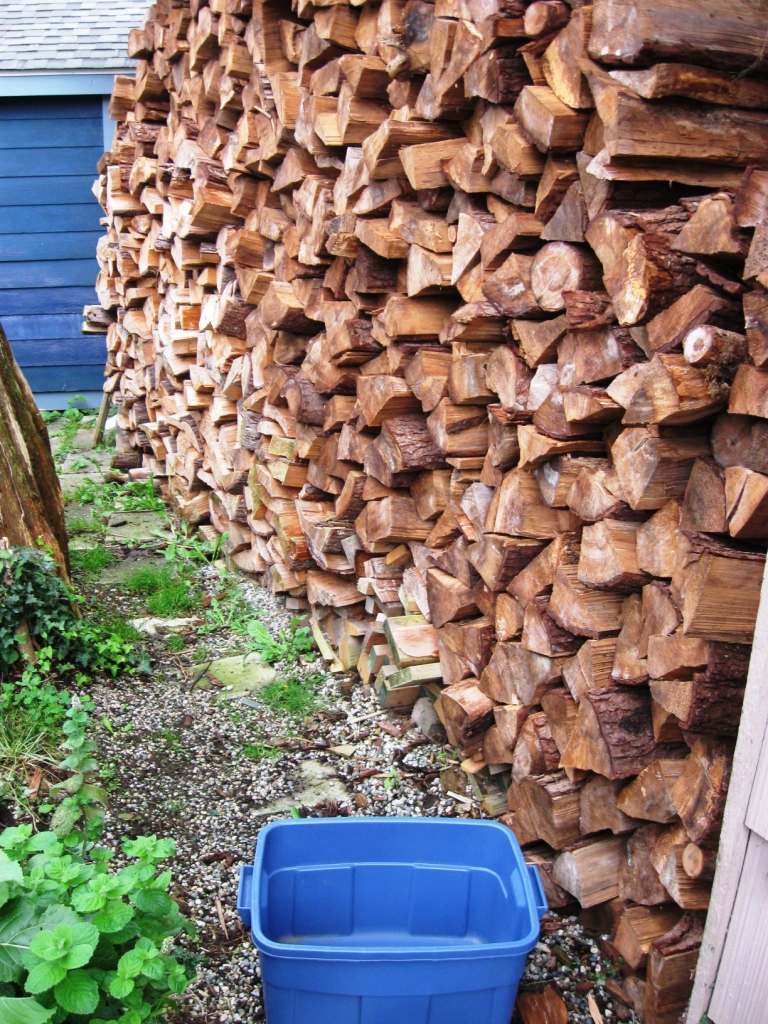 firewood carrier and wood pile
