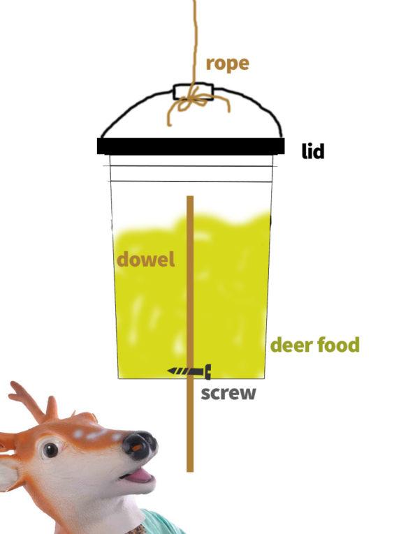 DIY deer feeder schematic