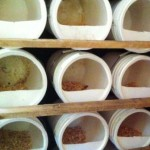 chicken nesting boxes grid