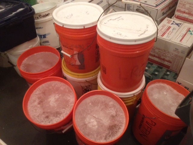 5 gallon bucket ice