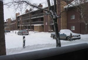 snowy-lloydminster