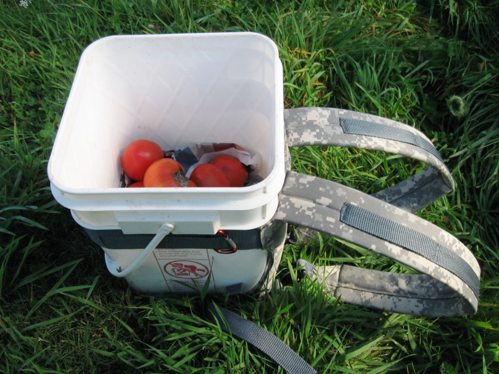 5-gallon-pack-tomatoes