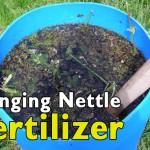 Stinging Nettle Fertilizer