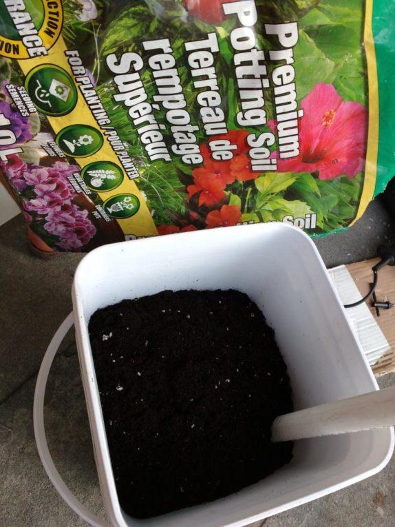 filling sub irrigated planter
