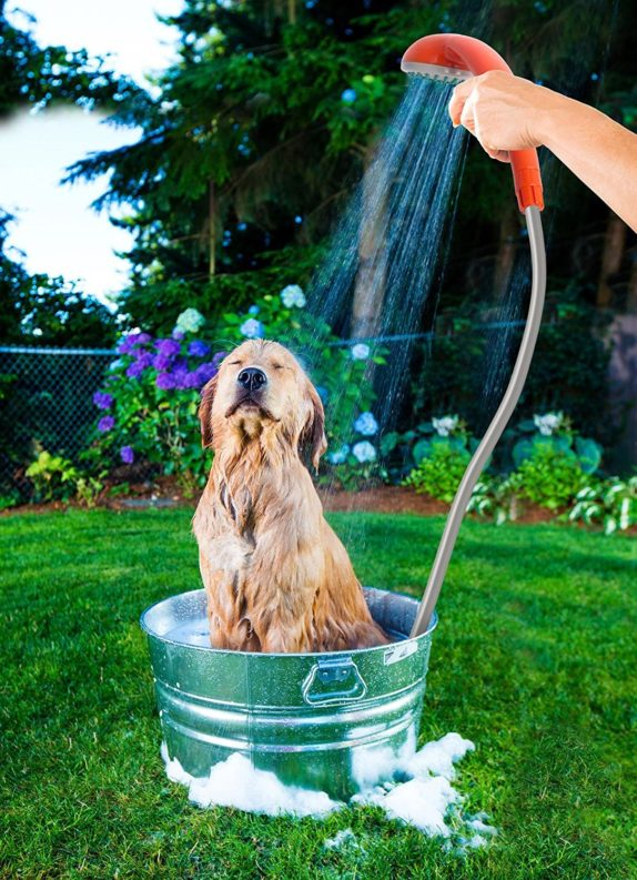 dog shower battery powered portable shower