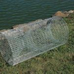 How to build your own fishing trap